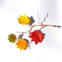 Клен осенний комби, листья