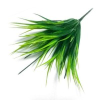 Осока зеленая малая, букет
