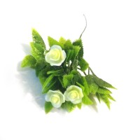 Роза белая, ветка