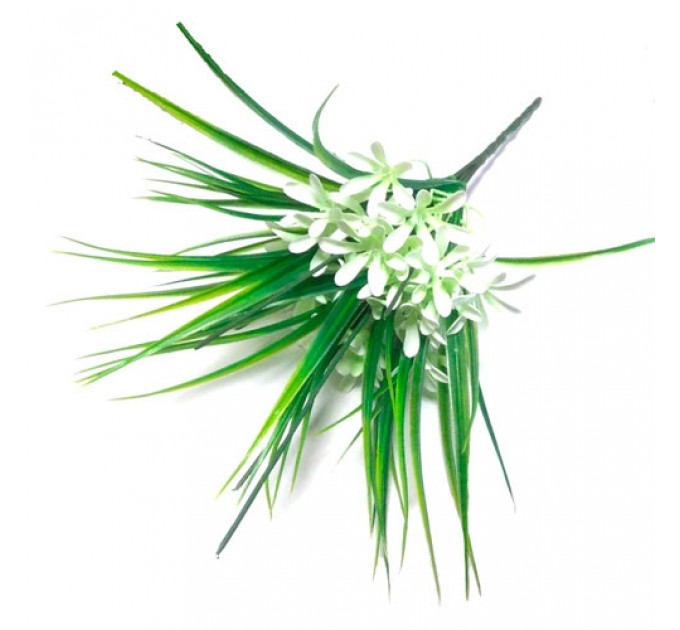 Букет зелени первоцвет, 5 веток