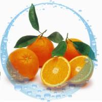 Апельсин гидролат, 100 мл