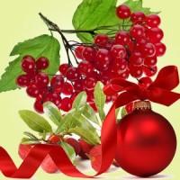Рождественская ягода, ароматическое масло, 10 мл