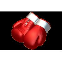 Боксерские перчатки_2, пластиковая форма
