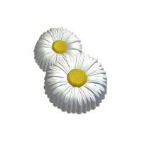 8 марта (ромашки), пластиковая форма