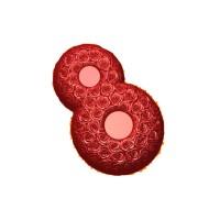 8 марта (розы)-2, пластиковая форма