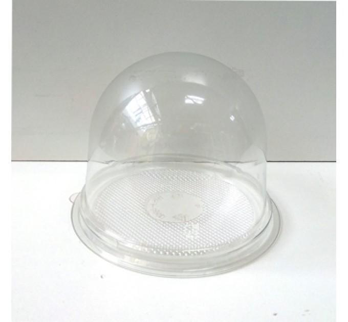 Контейнер Купол, прозрачное дно