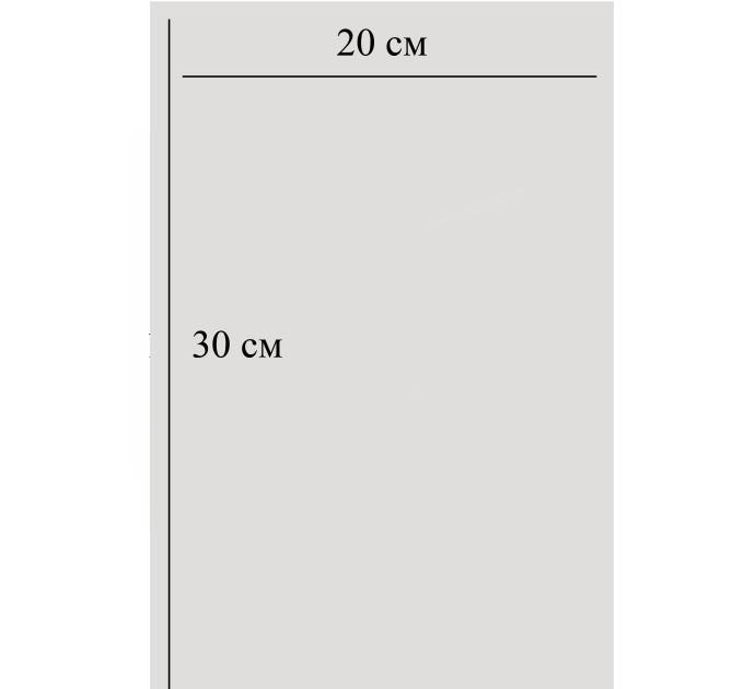 Пакет  прозрачный, 20х30 см, 10шт
